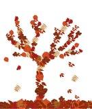 Fallende Blätter Lizenzfreies Stockbild