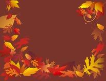 Fallende Blätter auf Brown Stockbild