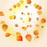 Fallende Herbstblätter Lizenzfreie Stockfotos