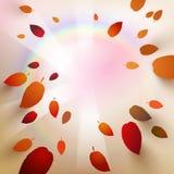 Fallende Herbstblätter Stockfotos