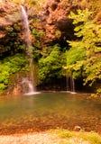 Fallende Natur lizenzfreie stockfotografie