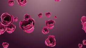 Fallende rosa Rosen mit schönem Hintergrund stock video