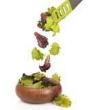 Fallende Salat-Blätter Lizenzfreies Stockfoto