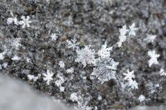 Fallende Schneeflocken-Kristalle auf strukturiertem hölzernem Hintergrund lizenzfreie stockfotografie