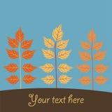 Fallender Blatthintergrund des Herbstes Stockbild