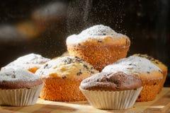 Fallender pulverisierter Zucker auf Vanillemuffin Stockfoto