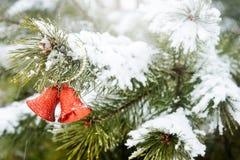 Fallender Schnee des Weihnachtsdekorations-draußen gefrorener Niederlassungs-Hintergrund-Winters, Glocken auf bereift Lizenzfreie Stockfotografie