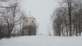 Fallender Schnee im Winter stock video footage