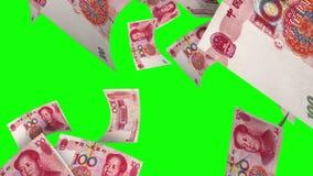 Fallendes Yuan (Schleife auf Greenscreen) stock video