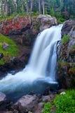 faller älgnationalparken yellowstone Royaltyfri Foto