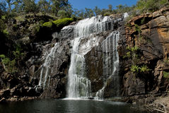 faller den grampiansmackenzie nationalparken victoria Arkivbild