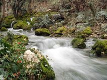 faller den små bergfloden Royaltyfria Bilder