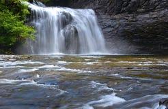faller den trent floden Royaltyfri Foto