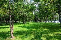 faller det niagara parktillståndet Arkivbild