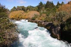 faller hukaen New Zealand arkivfoto