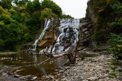 faller ithacaen Ithaca NY Arkivfoto