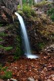 faller minnes- montana Royaltyfria Bilder