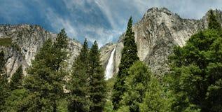 faller nationalparken yosemite Royaltyfri Bild