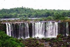 faller stora u vattenfall för iguaiguassuiguazu Royaltyfri Foto