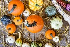 Fallerntekürbise, Kürbisse und zweifarbiger Mais gesehen von über O stockbilder