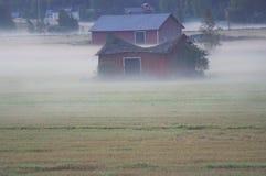 Fallfärdig ladugård på en dimmig morgon arkivbilder