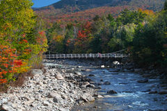 Fallfärgändring i det vita berg New Hampshire Royaltyfri Bild