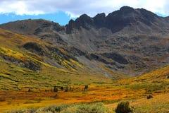 Fallfärger i en bergdal Arkivfoto