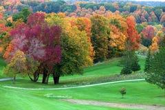 Fallfärger i golfbana arkivbilder
