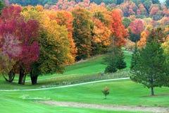 Fallfärger i golfbana arkivbild
