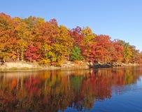 Fallfärger i Midwesten Arkivbild