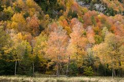 Fallfarbe im Lake Placid NY Lizenzfreie Stockfotos