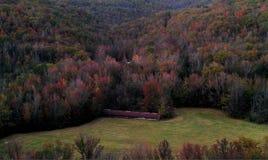 Fallfarben auf dem Berg Stockbild