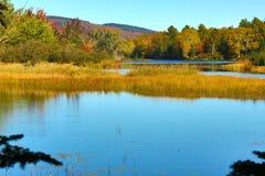 Fallfarben auf dem Magalloway-Fluss in Errol, New Hampshire lizenzfreie stockfotos
