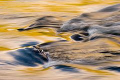 Fallfarben auf laufendem Fluss Stockbilder
