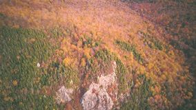 Fallfarben im Franconia-Kerben-Nationalpark stock footage
