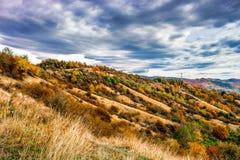 Fallfarben unter den grauen Wolken lizenzfreies stockfoto