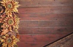 Fallgrenze mit Sonnenblumen auf rotem hölzernem Hintergrund des Schmutzes Stockbild