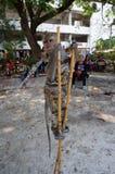Fallhammer Stockbild