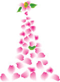 Falling. Pink and white petals falling and flowing from a flower Stock Image