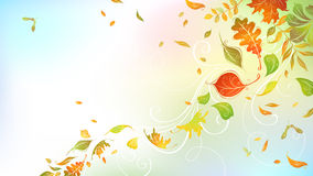 Falling autumn leaves on bright background. Stock Photo