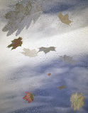 The falling autumn leaves and raindrops. On a window pane Stock Illustration