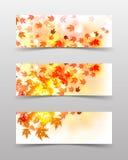 Falling autumn leaves vector illustration
