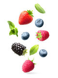 Falling berries isolated Stock Photos