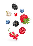 Falling berries Royalty Free Stock Photography