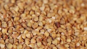 Falling buckwheat stock footage