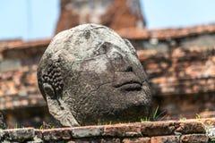 Falling Buddha head Royalty Free Stock Photography