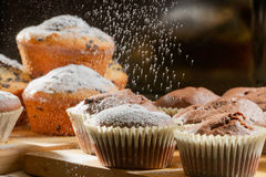 Falling caster sugar on various muffins Stock Photography
