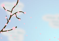 Falling Cherry Blossoms Royalty Free Stock Photography