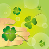 Falling clover Stock Images