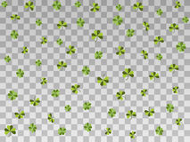Falling clover on a transparent background. Happy St. Patrick`s day. Vector. Illustration Stock Photos